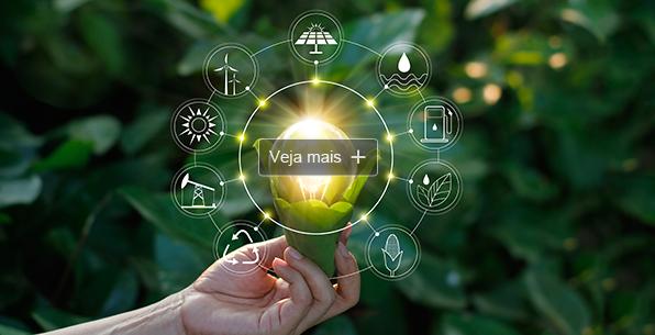 PROJETO BRAZIL SUGARCANE PROMOVE AçãO INTERNACIONAL EM EL SALVADOR